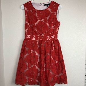 C Luce red floral over lay fit and flare dress